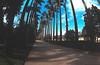 Jardim Botanico 1 horiz_-alta