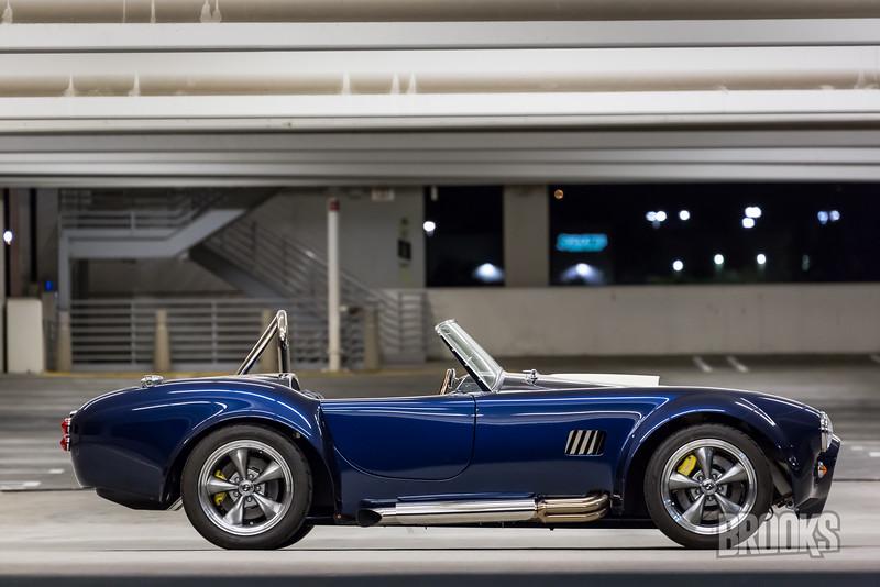 Cobra-249.jpg