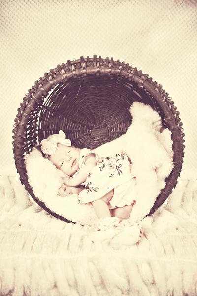Rosalie Dawn Wilson Baby Shoot