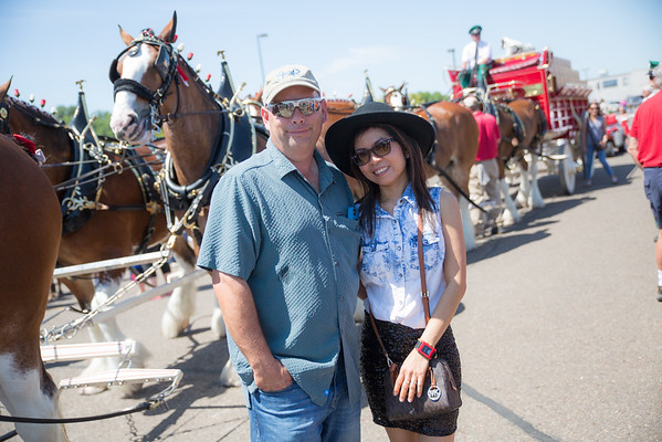 Mcquades Clydesdales Cash Wise