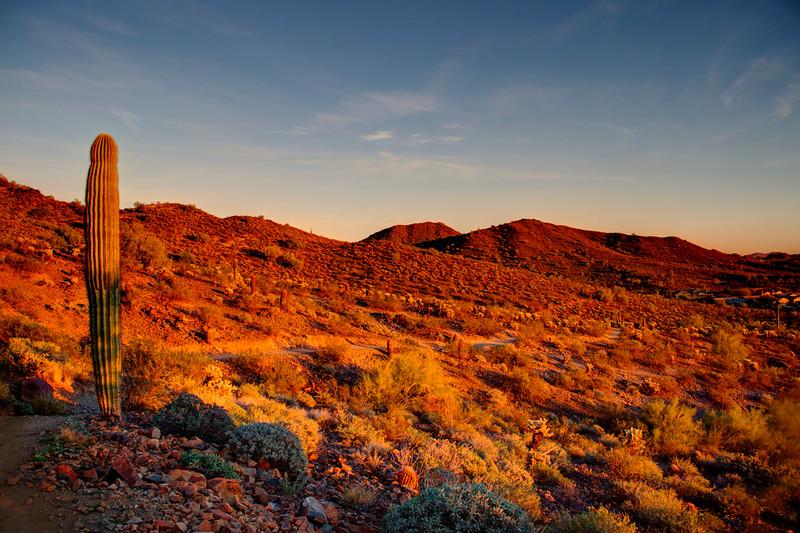 Phoenix_AZ(5).jpg