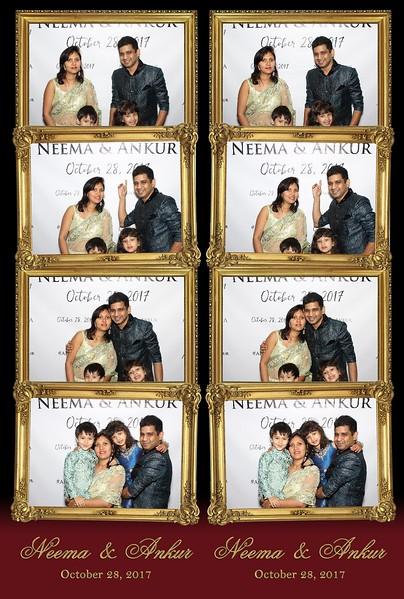 Neema & Ankur's Wedding (10/28/17)