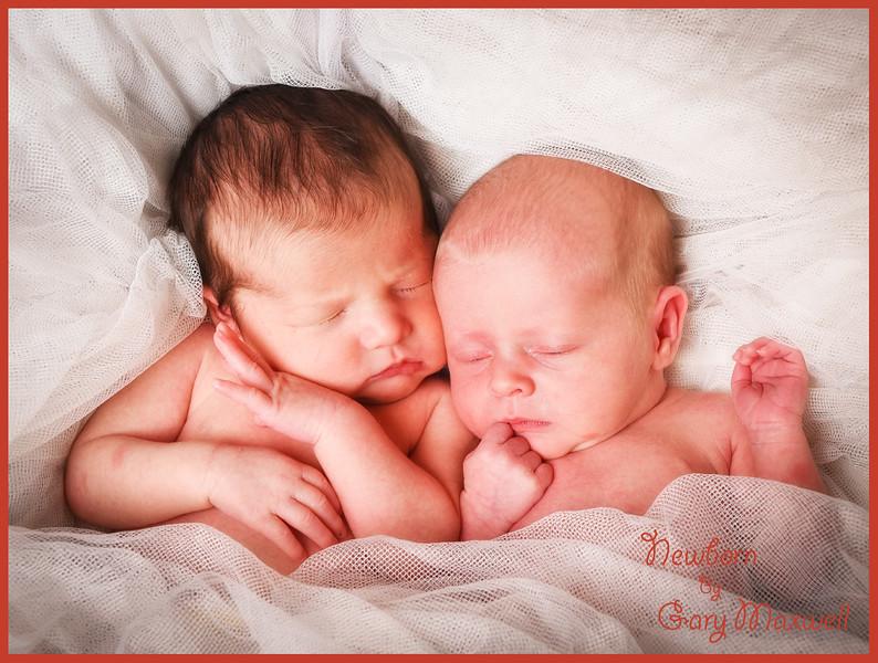 Newborn Babies 002.jpg