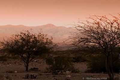 Panimint Springs, Death Valley Area, California