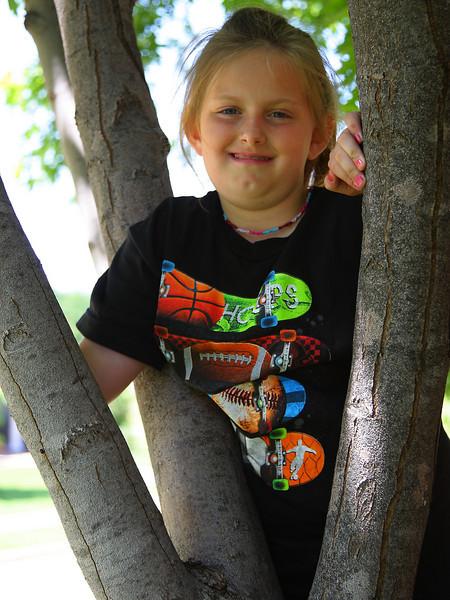 Tree play