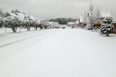 Snow Day Feb 2015