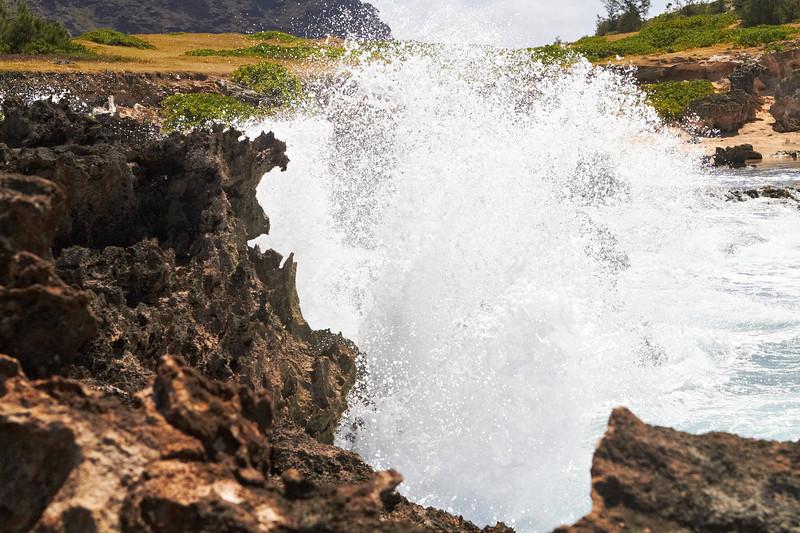 Hawaii932.jpg