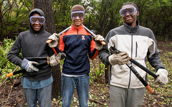 SERVICE DAY 2016:  Forest Preserve and Dogs