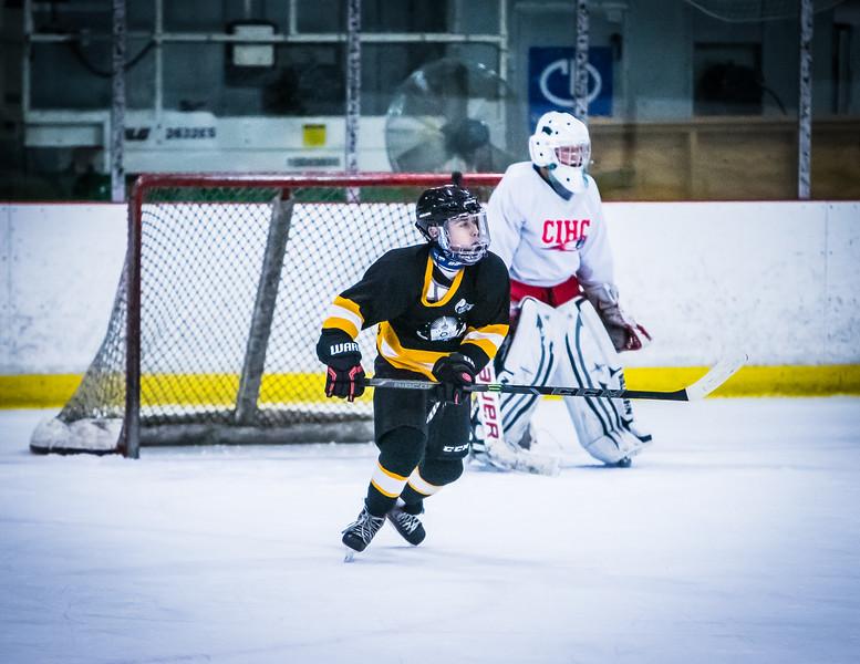 Bruins2-712.jpg
