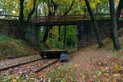 Fall Colors - Oct_24_09