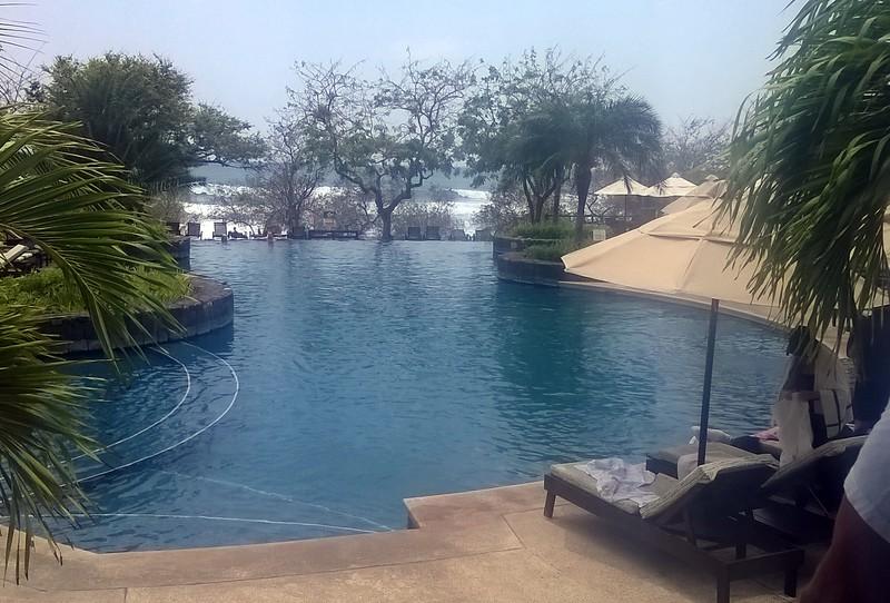 Hmmm. Pool or ocean?