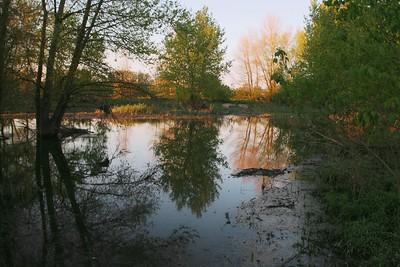 Loire Sauvage en Lit Majeur