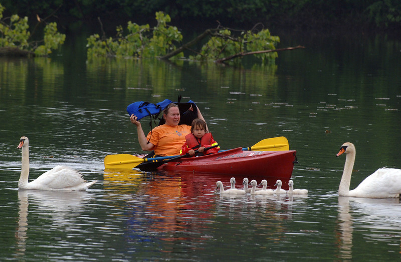 Kim Kratz and son, Zak,4, kayak on the Huron River during a Gallup Park River Kids event.