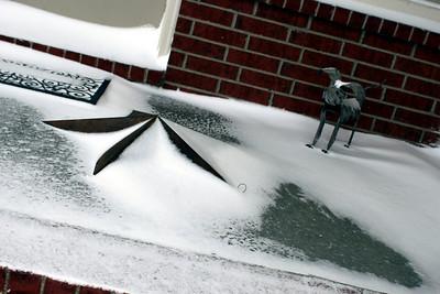 20100320 Spring Snow