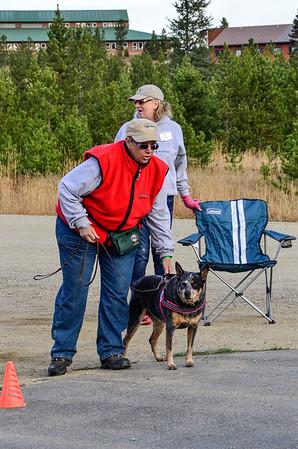 Colorado Nose Work Camp 2015