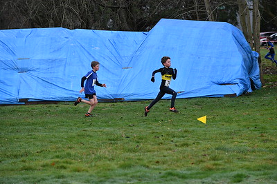 Hampshire Cross - Country Championships  4th January