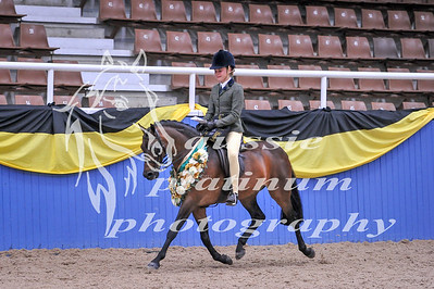 Class 3 Childs Med Show Hunter Pony