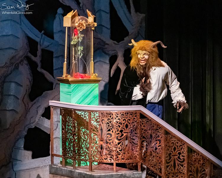 Beauty and the Beast 2018-11-08-65108.jpg