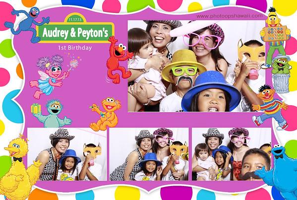 Audrey & Peyton's 1st Birthday (Fusion Portraits)
