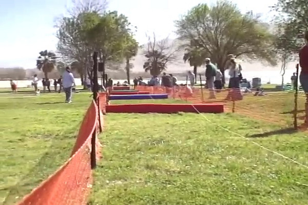 """This is BillyJack's shining moment in the hurdle's race. Watch as he is way out in front, then clips the hurdle and does a 360! It was the """"agony of defeat"""" moment for him. Jack Russell Races February 17, 2007 Lake Perris, California, 85 degree weather!"""