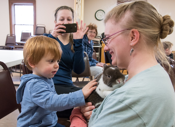 04/11/18 Wesley Bunnell | Staff Animal care staffer and educator Meaghan Jameson holds Kiwi the rabbit for Parker Duze, age 2, to touch as mom Rebecca takes a photo during an animal class at the New Britain Youth Museum at Hungerford Park on Wednesday afternoon. .