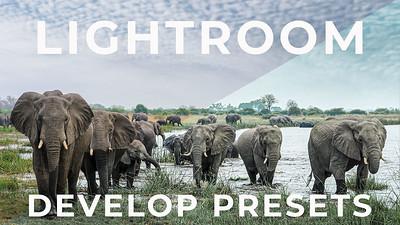 Adobe Lightroom Develop Presets