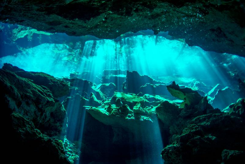2014 Whale Shark - Cave Adventure-101.jpg