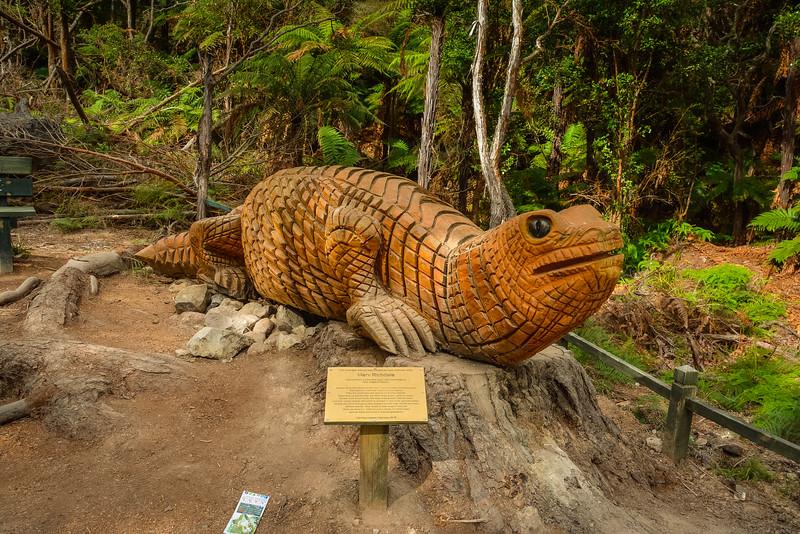 Rotorua-90.jpg