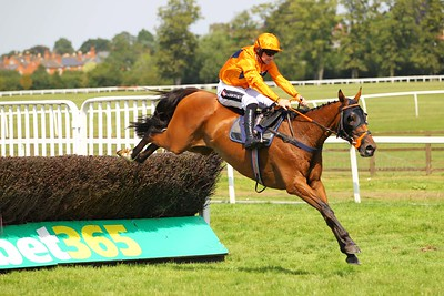 Worcester Races - Thu 22 July 2021 (Photos by: Steve Davies)