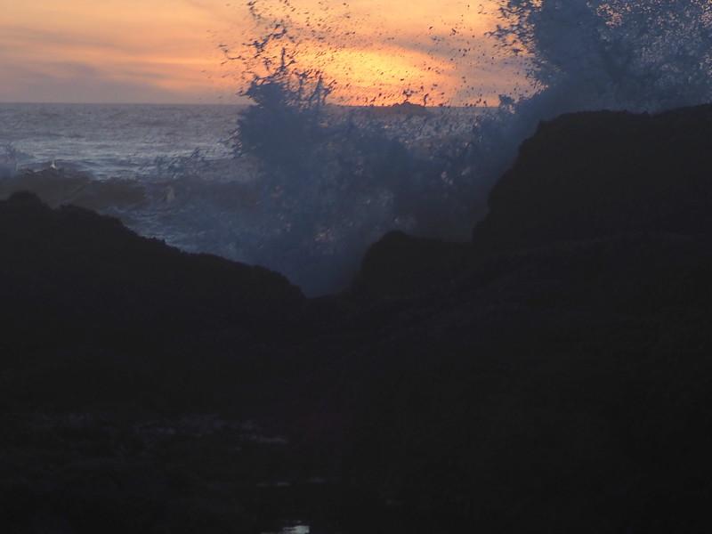 Seal Rock Monday 27.JPG