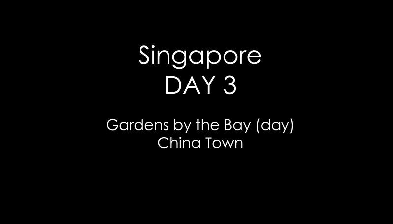 Sing Day 3.jpg