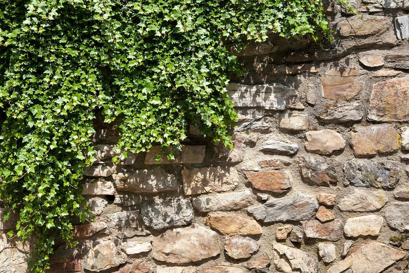 wall87.jpg
