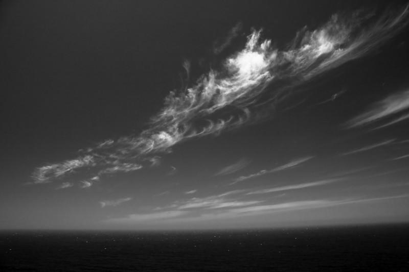 West coast mares