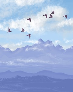 Flying north - digital drawing