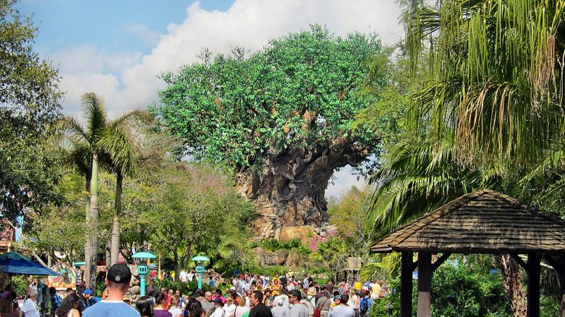 Walt Disney World, Orlando, Florida - February 2011
