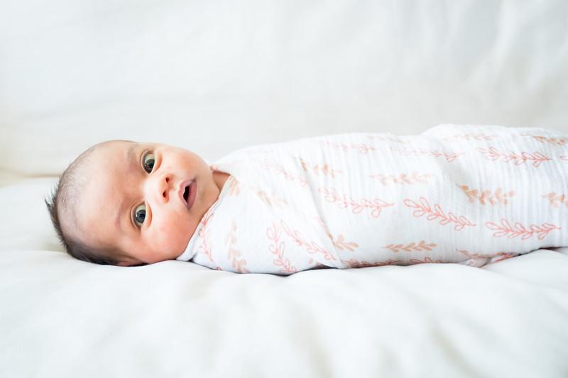 Newborn 2018-59.jpg