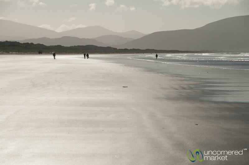 The Inch Beach, Morning Walk - Dingle Peninsula, Ireland