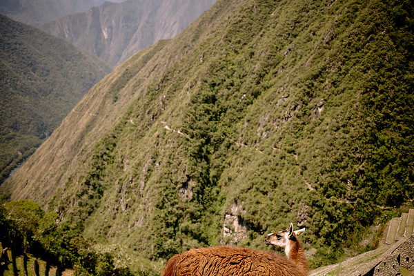 Peru_228.JPG