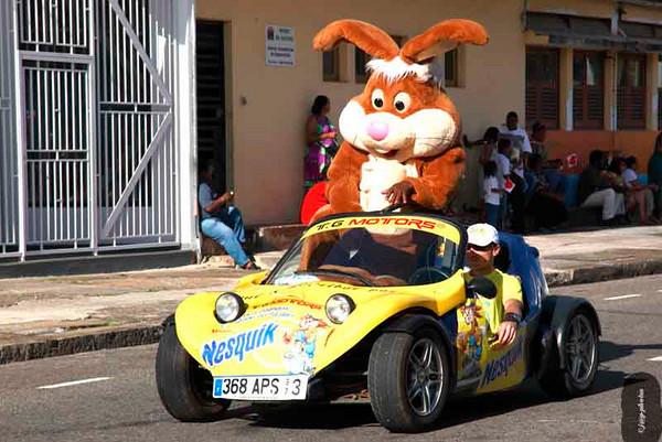 Carnaval année 2010
