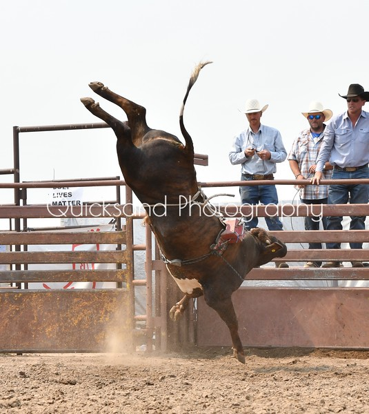 Oil Patch Bull Bash