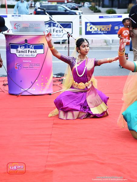 Tamilfest-2019 (120).jpg