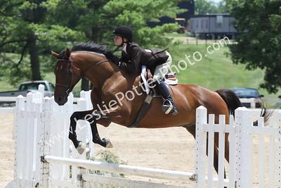 2010 Robert Murphy  Horse Show