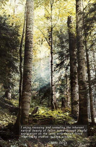 MikeSorge-Woodturner-Vertical1-Bottom.jpg