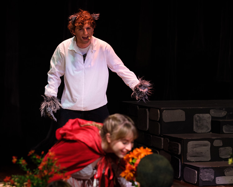 2018-03 Into the Woods Performance 0133.jpg