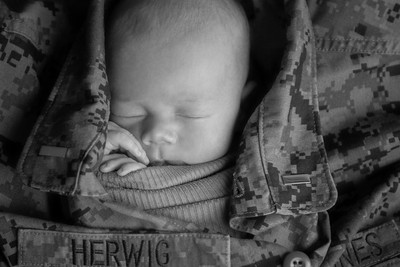 Baby David Newborn