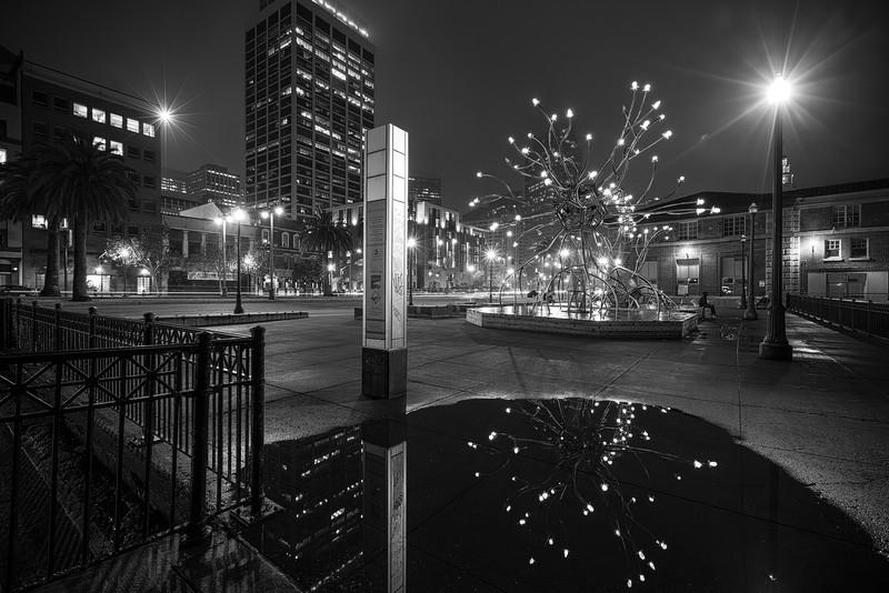 SF Reflections .jpg