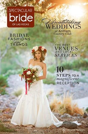 2017 Spectacular Bride Magazine Covers