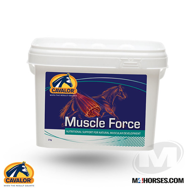 Muscle-Force.jpg