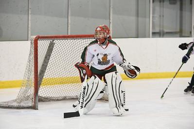 Game 1 - Suburban Moose Vs Livonia Flyers-EE