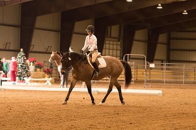 Horse 630